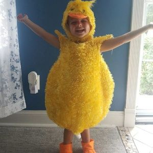 Adorable Kids Fluffy Duck Costume